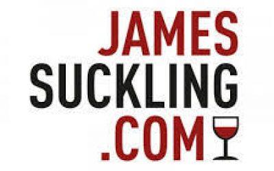 James Suckling note 90-91 le millésime 2020 DSA du Domaine de Saint Amand